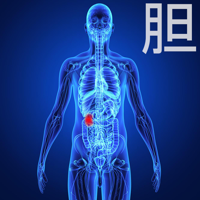 胆嚢・胆道がん