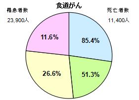 食道がん円グラフ